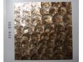贝壳墙纸 经典系列 (12)